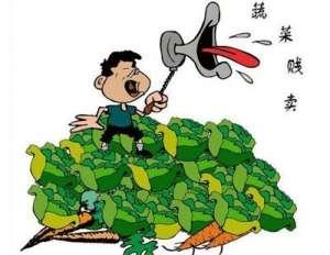 菜贱伤农 发展订单农业走出低价周期